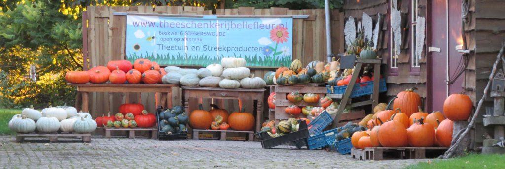 pompoenmarkt bij Bellefleur